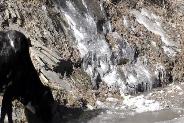 PunjabKesari, Cold Attack Image