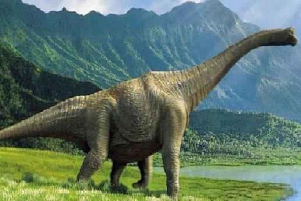 ostrich like dinosaur fossil was found in canada