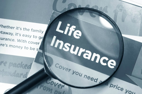 life insurance industry s new premium income increased