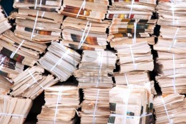 haryana news the number of newspaper takers is down by 50