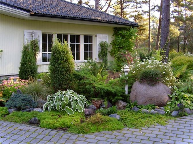 गार्डन में लगाएंगे ये पौधे तो होगी पैसों की बरसात Pics