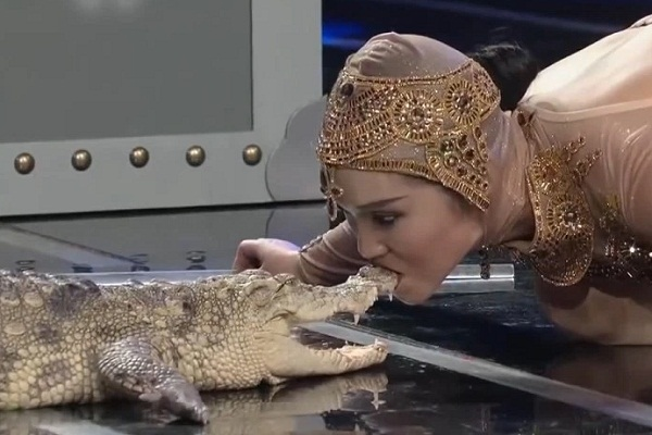 chinese woman kisses a crocodile on a national tv