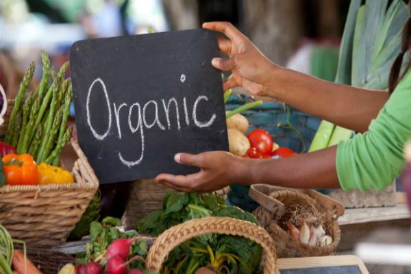 govt encourages organic farming