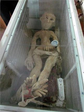 chinese man reveals alien in his fridge