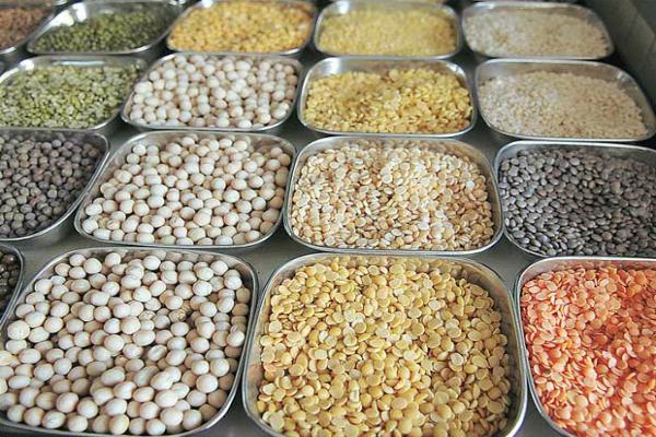 delhi wholesale pulses lentils