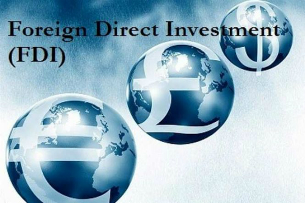 government looking into fdi policy sticking points