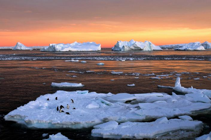 world largest marine park created in antarctic ocean