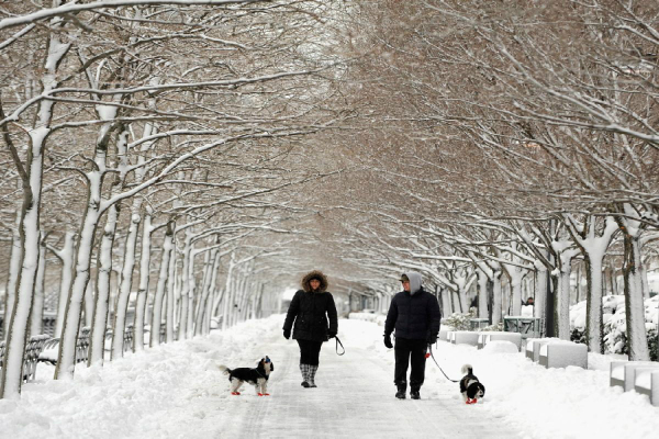 blue alert issued for snow in north china