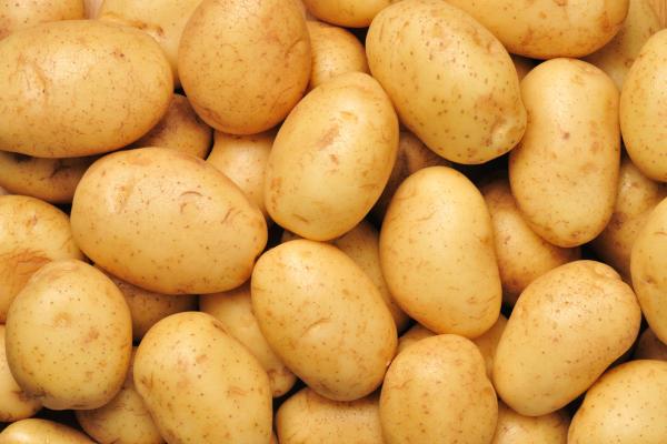 potato  note exchange