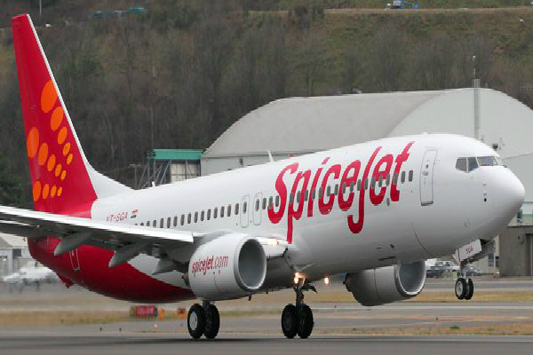 spicejet launches domestic travel at rs 737