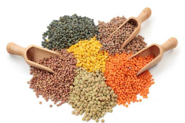 pulses prices down