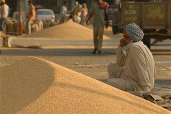 farmers come in tension  traders given ultimatum take cheque