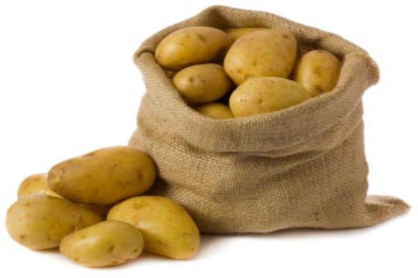 mahindra hzpc inaugurates seed potato plant in mohali