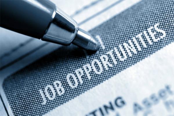 it sector job kotak institutional performance