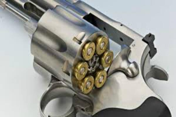 32 revolver and 11 round  theft cases