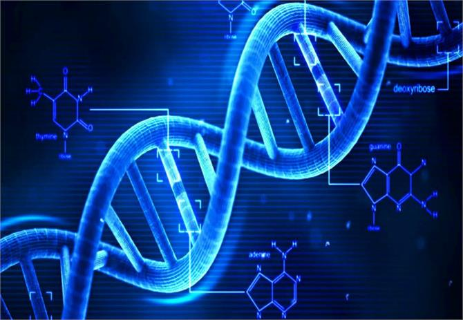 physicists confirm there a second layer of information hidden in our dna