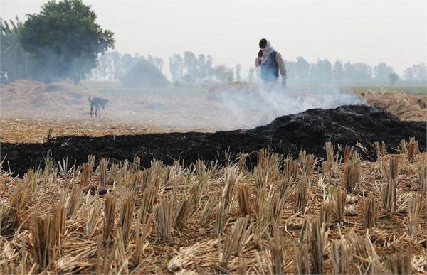 despite the ban  it is being stubble burning