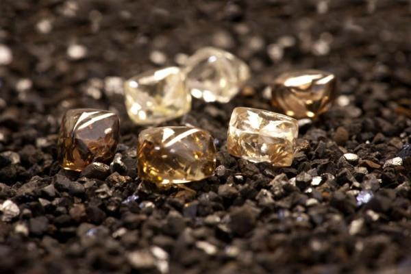 vedanta  adani may bid for bunder diamond project