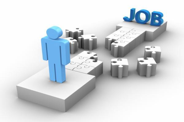 job  salary  candidate  ukmssb