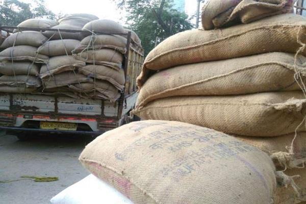 punjab mandi board closed paddy purchase in rural areas