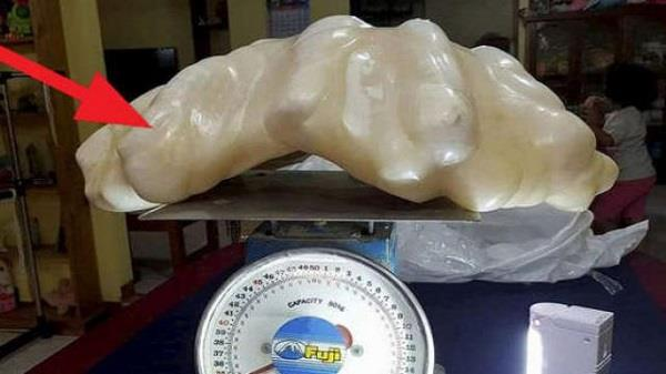 fisherman giant pearl hidden under bed for 10 years