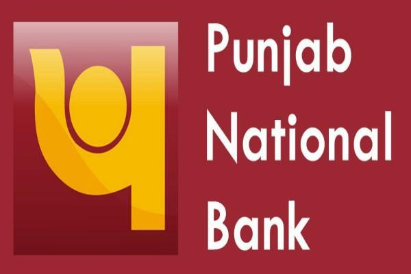 auction of pnb 32 borrower s property