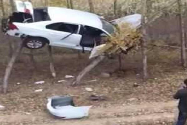 car bouncing between two trees