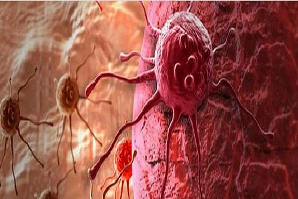 research on cancer to indian origin scientists  81 million