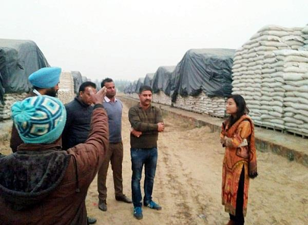 1650 bags sold on wheat trucks