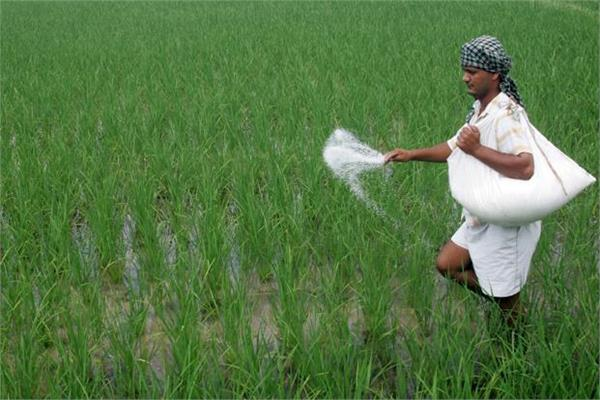 fertilizer subsidy