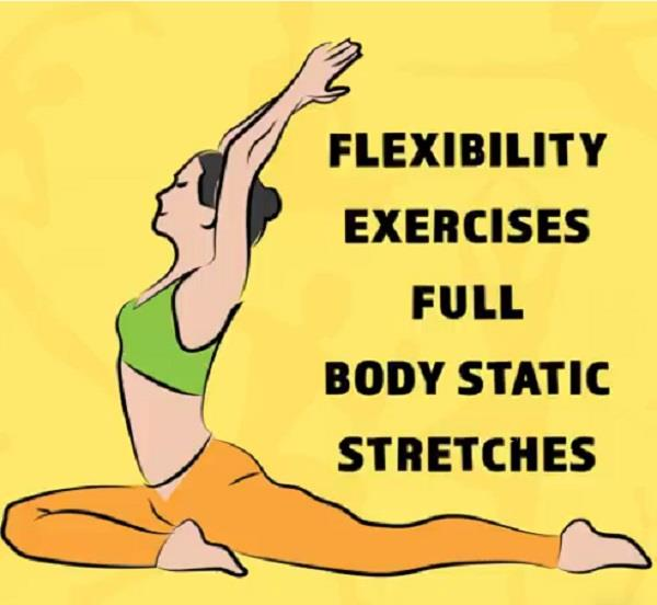 flexibility exercises full body static stretches
