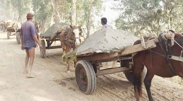 filed against 11 people stolen by sand from ravi dariya