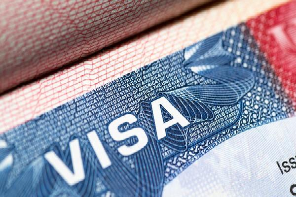 h1 b visa holders will pay salaries  indian professionals have big losses