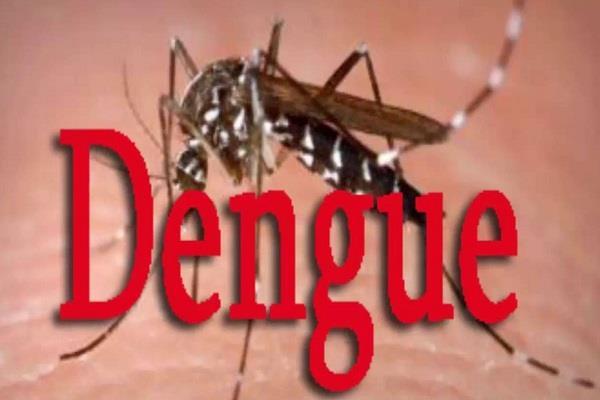 400 cases of dengue positive in himachal