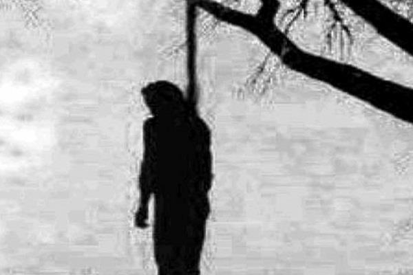 dead body hanged from tree