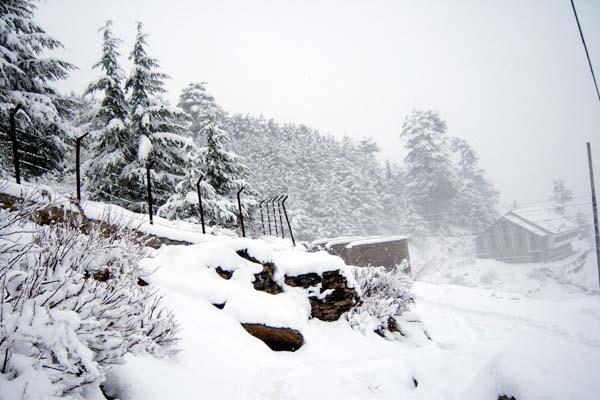 3 days heavy snowfall and rain warning in himachal