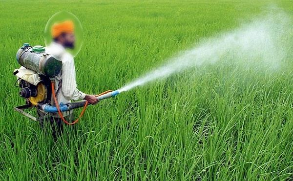 the indiscriminate use of pesticides threat to the next generation