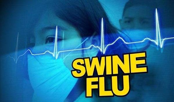 swine flu in jalandhar