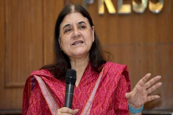 maneka gandhi comment on mla