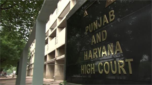 punjab and haryana high cout decided time duration for firecrackers