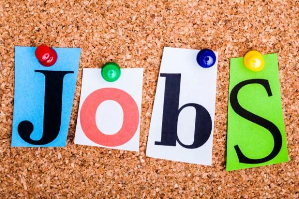 tspsc   job  salary  candidate