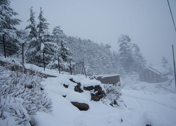 snowfall in pangi broke 10 years record