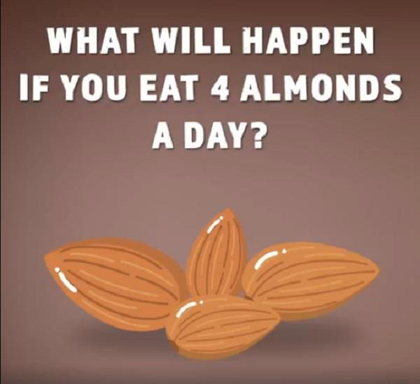 what happens if you eat 4 almonds a day