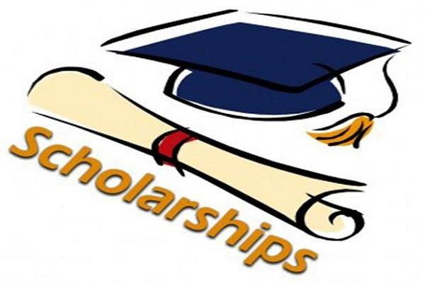 scholarship committees created to investigate the approval of applications