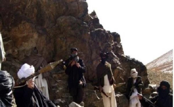 hsticks on haqqani network  10 militant piles