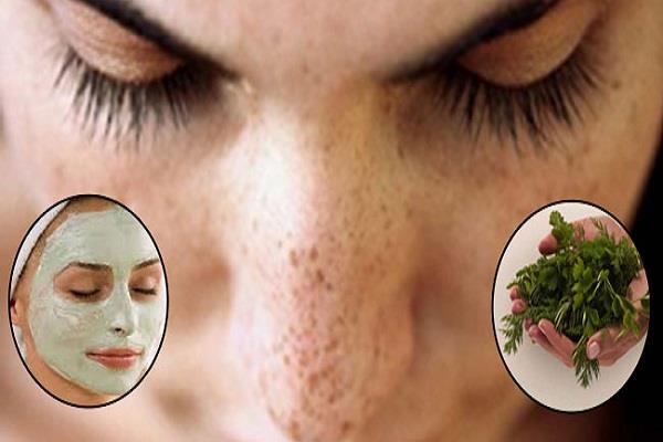 चेहरे के दाग-धब्बे को दूर करें पार्स्ली फेस मास्क