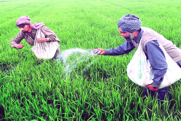 cabinet approves changes to new urea policy
