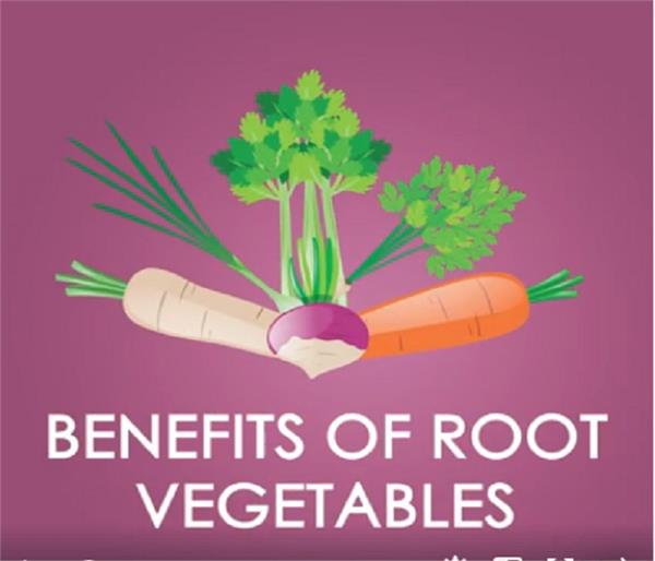 benefits of root vegetable