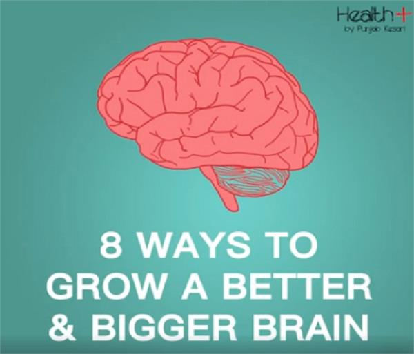 smart tips for grow brain