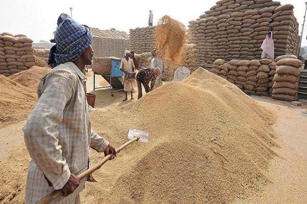 government can close the target before buying wheat